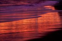 Beach Reflection Sunset Waves Foam Santa Cruz Seabright California