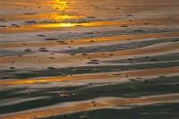 Beach Reflection, Sunset, Santa Cruz, California,