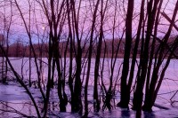 Dawn, Sunrise, Moon, Sudbury River, Massachusetts