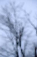 Rainy-Window, Winter, Gray, Shadows